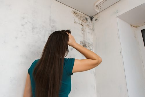 Girl looks up into corner of room and sees mold