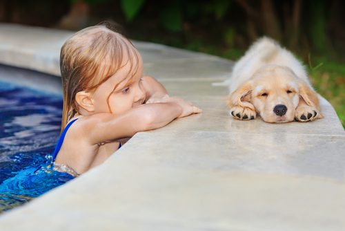 Child and Dog in the Summer Pool