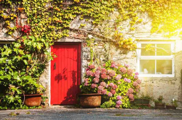 A Red Door is on a house surunded by flowers ad greenery