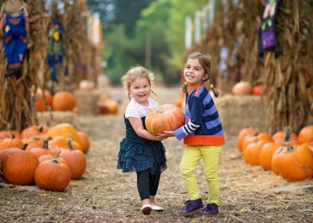 two small girls carrying a pumpkin in a pumpkin patch