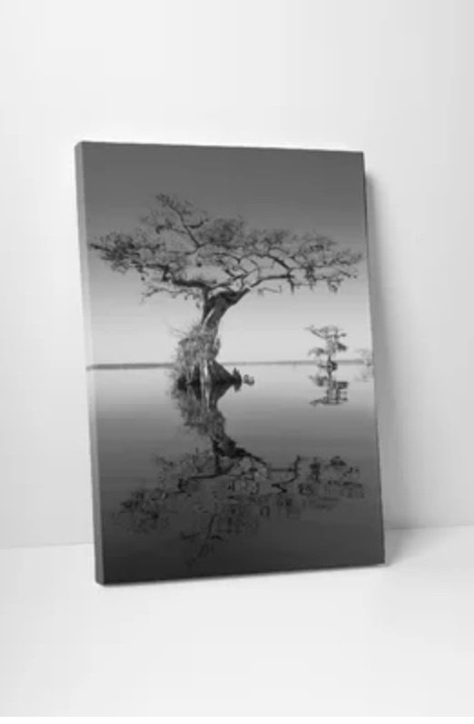 """""""Trees at Lake 2"""" by Moises Levy Photographic Print Wrapped Canvas"""