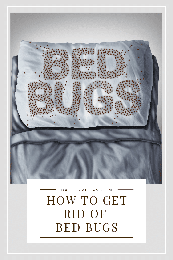 "Image shows a bed with the word Bed Bugs on the pillow and little dots that look like bed bugs covering the pillow. ""how to get rid of bed bugs"" and ballenvegas.com is on the footer"