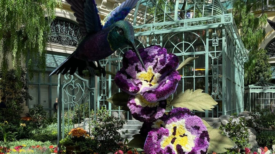 Inside the Bellagio Hotel and Casino lies their beautiful flower gardens. This inspirational space is full of the beauty of exotic flowers and blooms that are as pretty as they are fragrant. A great place to take some photos together that you can turn into a lovely forever keepsake.